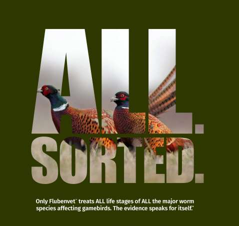 Flubenvet – Protecting Your Game Birds From Worms